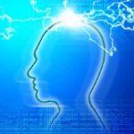 新卒は会社にとって洗脳しやすい人材